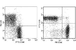 Flow Cytometry (FACS) image for anti-CD40 antibody (CD40 Molecule, TNF Receptor Superfamily Member 5) (AA 1-193) (PE) (ABIN2691651)
