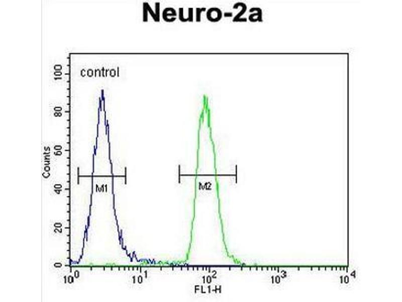 Flow Cytometry (FACS) image for anti-Cirrhosis, Autosomal Recessive 1A (Cirhin) (CIRH1A) (N-Term) antibody (ABIN951532)