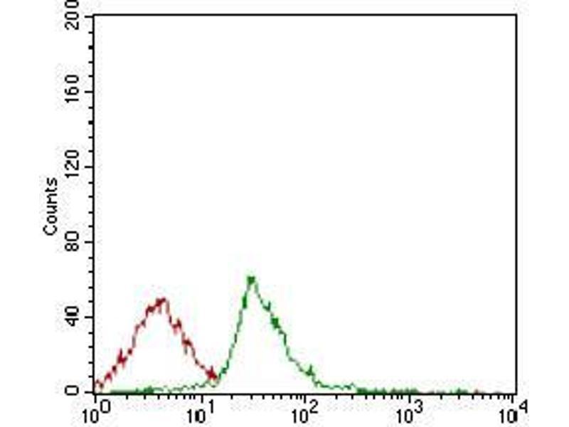 Image no. 2 for anti-HLA-DR-gamma (CD74) (AA 1-106) antibody (ABIN1724871)