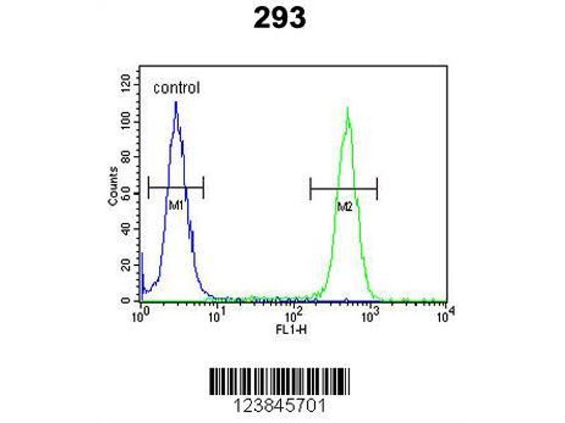 Flow Cytometry (FACS) image for anti-ASMT antibody (Acetylserotonin O-Methyltransferase) (AA 212-241) (ABIN650987)