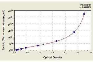 Image no. 1 for Complement Component 5a (C5a) ELISA Kit (ABIN457184)