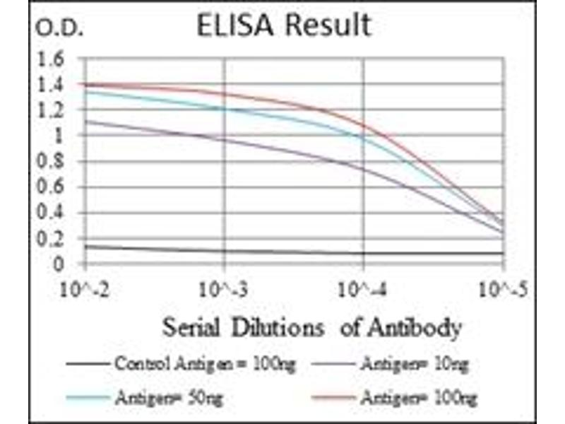 ELISA image for anti-Ubiquitin antibody (ABIN1109441)
