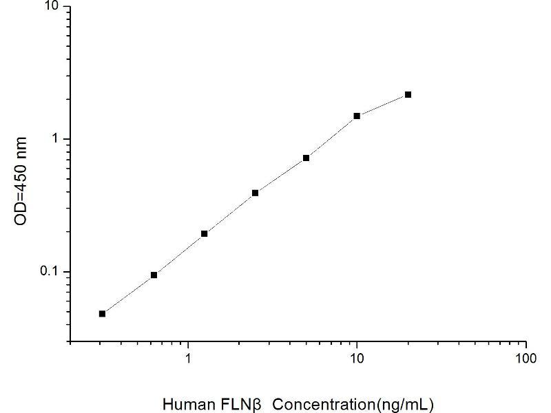 Filamin B, beta (FLNB) ELISA Kit (2)