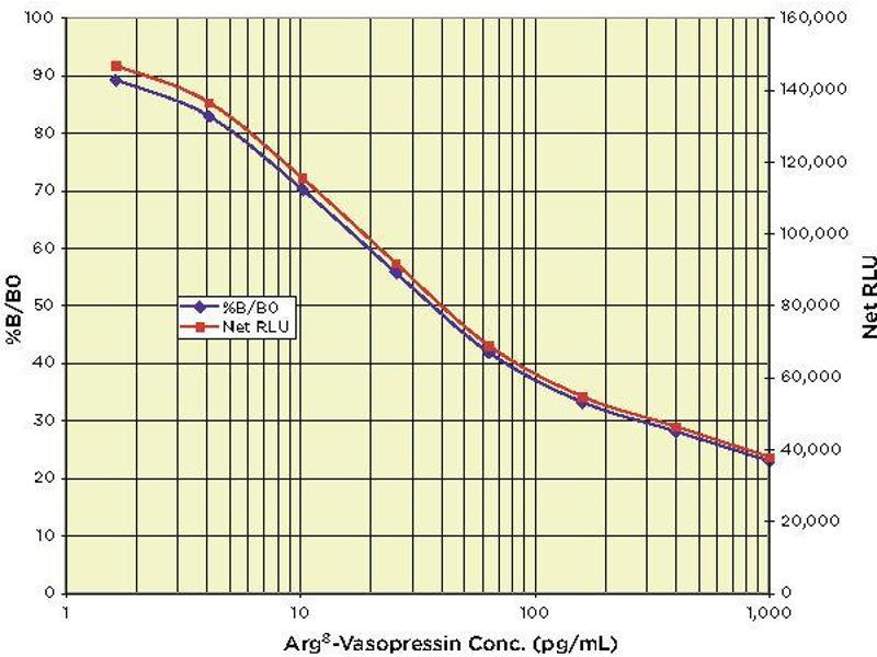 Arginine Vasopressin (AVP) ELISA Kit