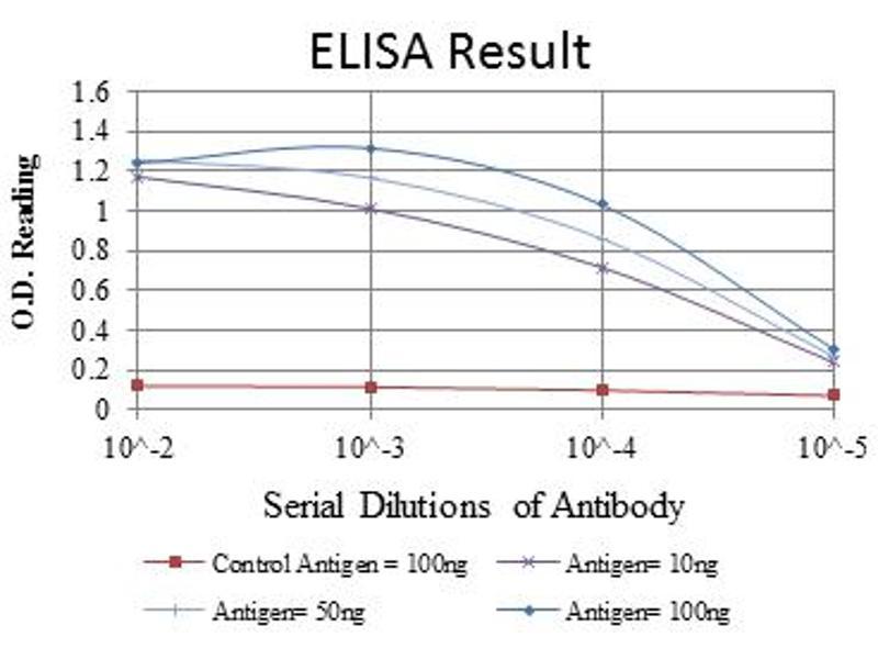 ELISA image for anti-EGF antibody (Epidermal Growth Factor) (ABIN1107062)