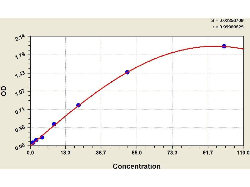 Complement Factor B (CFB) ELISA Kit (2)