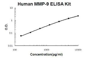 Image no. 1 for Matrix Metallopeptidase 9 (Gelatinase B, 92kDa Gelatinase, 92kDa Type IV Collagenase) (MMP9) ELISA Kit (ABIN411333)