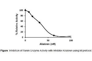 Image no. 1 for Renin Inhibitor Screening Kit (Fluorometric) (ABIN1685940)
