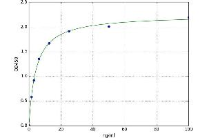 Image no. 1 for Metallothionein 1A (MT1A) ELISA Kit (ABIN5525743)