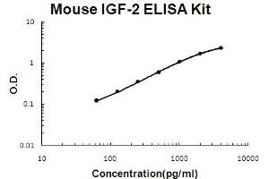 Image no. 1 for Insulin-Like Growth Factor 2 (IGF2) ELISA Kit (ABIN6720251)