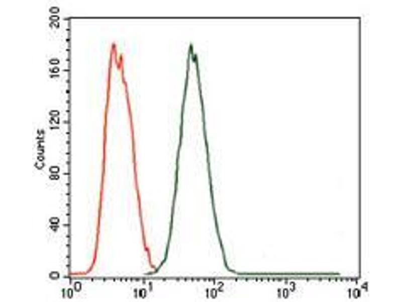 Flow Cytometry (FACS) image for anti-Maternal Embryonic Leucine Zipper Kinase (MELK) (AA 637-651) antibody (ABIN969538)