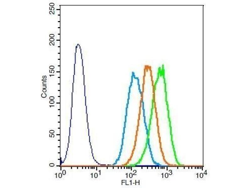 Flow Cytometry (FACS) image for anti-Elastin (ELN) (AA 750-786) antibody (ABIN734003)