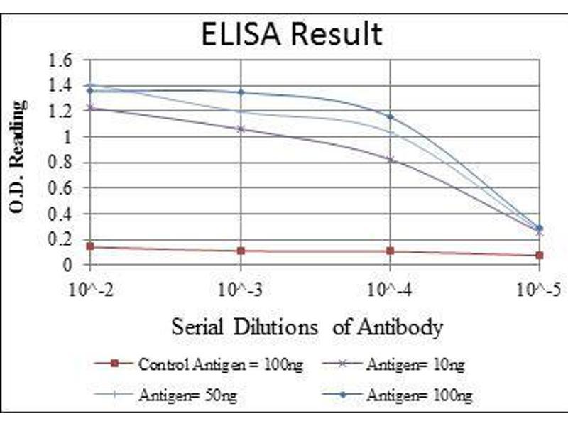 ELISA image for anti-HFE antibody (Hemochromatosis) (ABIN969192)
