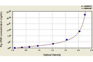 Image no. 1 for Carboxypeptidase B1 (Tissue) (CPB1) ELISA Kit (ABIN6973798)