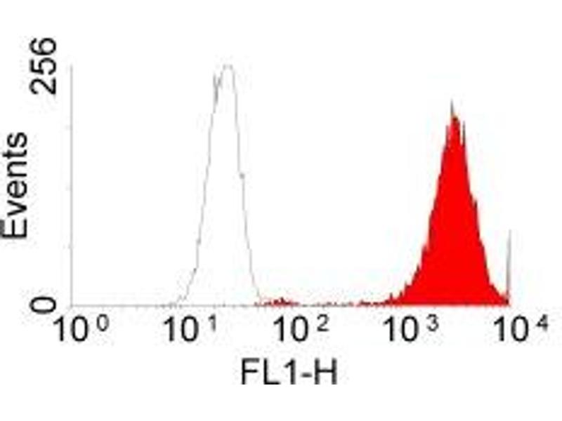 Flow Cytometry (FACS) image for anti-EGFR antibody (Epidermal Growth Factor Receptor) (Extracellular Domain) (ABIN2166934)