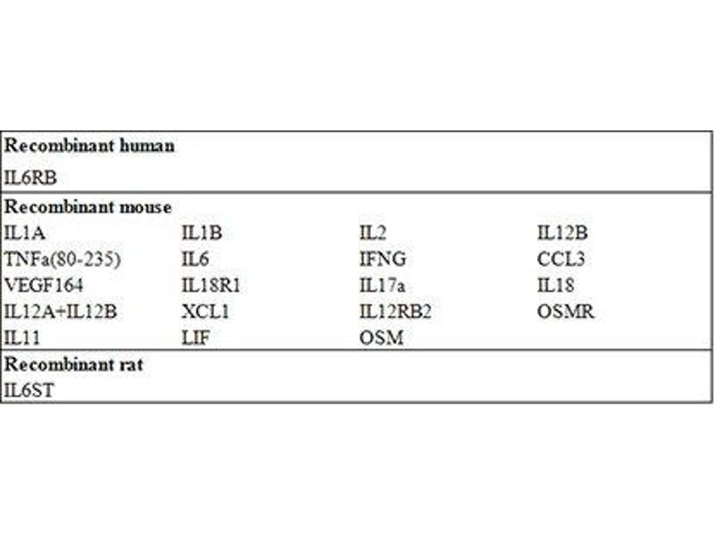 Interleukin 6 Signal Transducer (Gp130, Oncostatin M Receptor) (IL6ST) ELISA Kit (2)