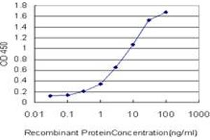 Image no. 1 for anti-Stress-Induced-phosphoprotein 1 (STIP1) (AA 445-543) antibody (ABIN564757)