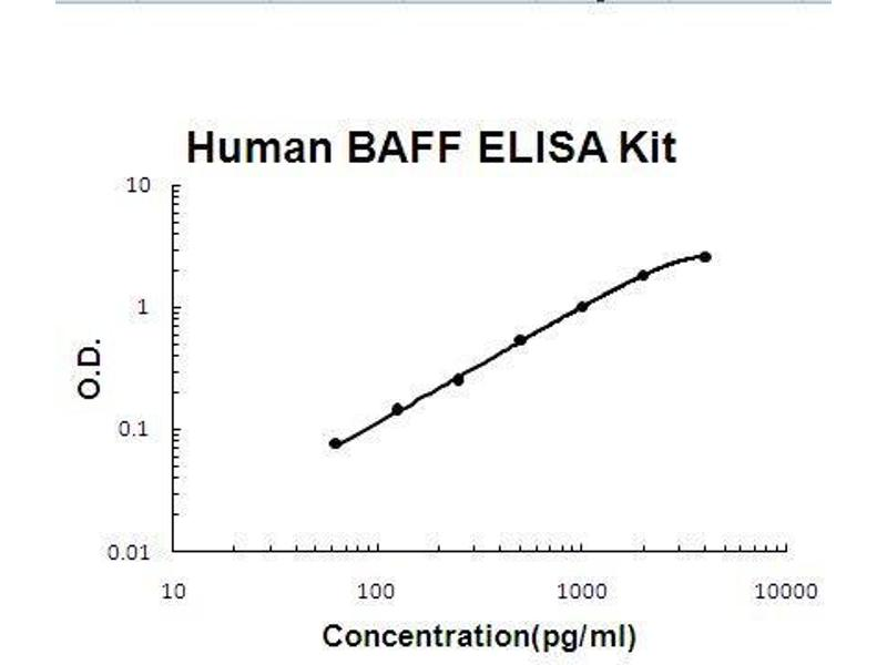 Tumor Necrosis Factor (Ligand) Superfamily, Member 13b (TNFSF13B) ELISA Kit