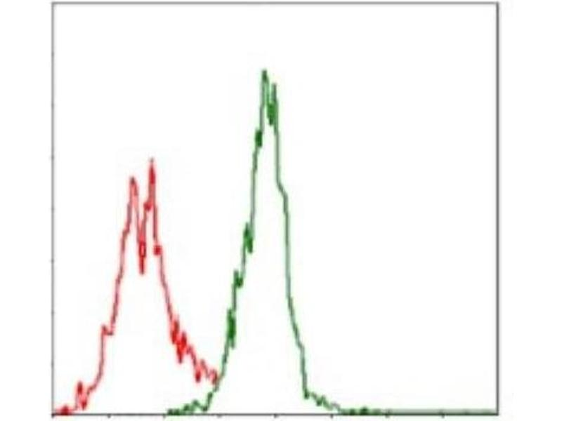 Flow Cytometry (FACS) image for anti-Argininosuccinate Synthase 1 (ASS1) antibody (ABIN4281471)