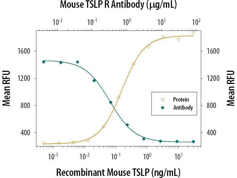 Image no. 2 for anti-Cytokine Receptor-Like Factor 2 (CRLF2) (AA 20-233) antibody (ABIN4899486)
