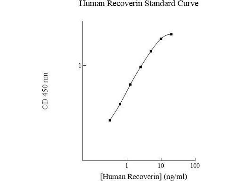 Recoverin (RCVRN) ELISA Kit