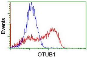 Image no. 1 for anti-OTU Domain, Ubiquitin Aldehyde Binding 1 (OTUB1) antibody (ABIN1499931)