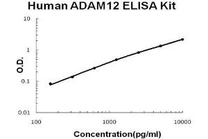 Image no. 1 for ADAM Metallopeptidase Domain 12 (ADAM12) ELISA Kit (ABIN1672847)
