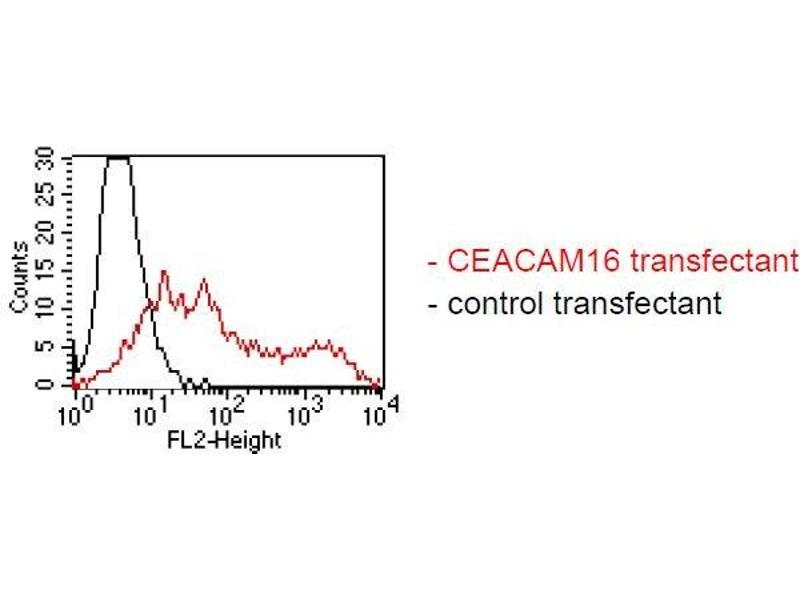 Flow Cytometry (FACS) image for anti-Carcinoembryonic Antigen-Related Cell Adhesion Molecule 16 (CEACAM16) antibody (ABIN1381739)