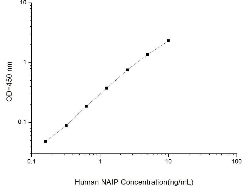 NLR Family, Apoptosis Inhibitory Protein (NAIP) ELISA Kit (2)