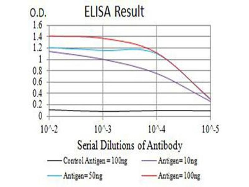 ELISA image for anti-ARP3 Actin-Related Protein 3 Homolog (Yeast) (ACTR3) (AA 287-418) antibody (ABIN5611287)