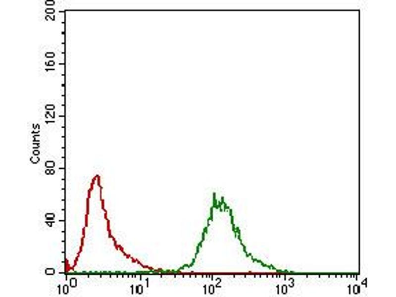 Image no. 2 for anti-KH Domain Containing, RNA Binding, Signal Transduction Associated 2 (KHDRBS2) (AA 160-349) antibody (ABIN5924815)
