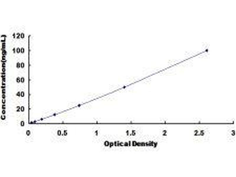 Catechol-O-Methyltransferase (COMT) ELISA Kit