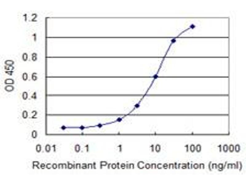 ELISA image for anti-CD80 antibody (CD80) (AA 35-288) (ABIN560237)