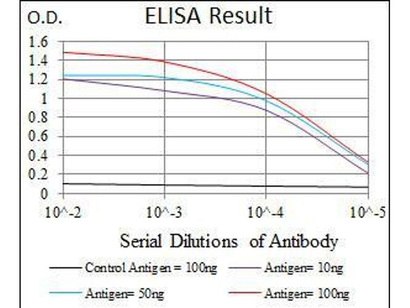 ELISA image for anti-Mitogen-Activated Protein Kinase 8 (MAPK8) antibody (ABIN969537)