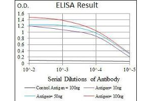 ELISA image for anti-JNK antibody (Mitogen-Activated Protein Kinase 8) (ABIN969537)