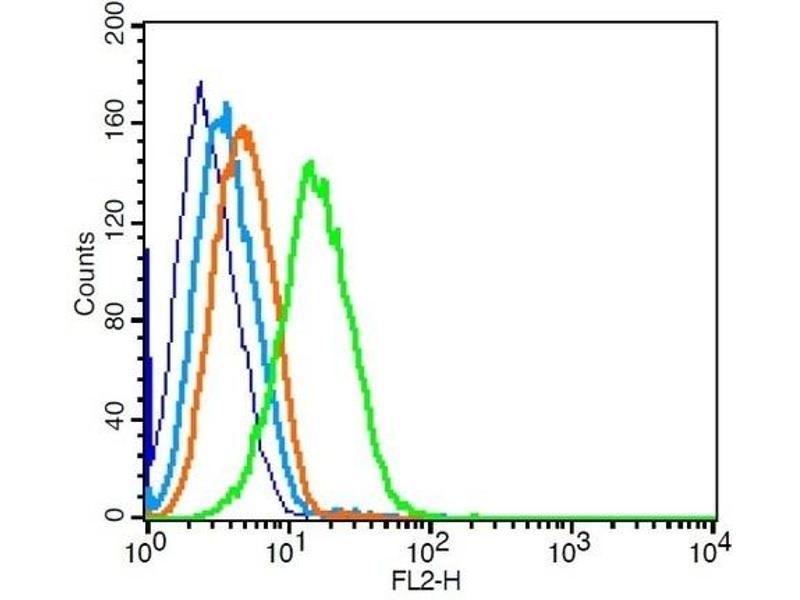 Flow Cytometry (FACS) image for anti-Chemokine (C-C Motif) Receptor 7 (CCR7) (AA 25-59) antibody (ABIN674724)