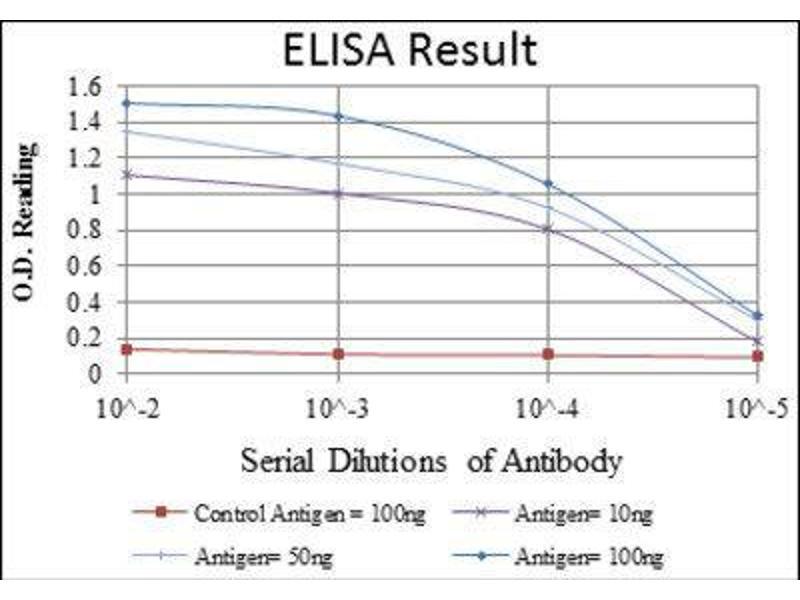 ELISA image for anti-Cas-Br-M (Murine) Ecotropic Retroviral Transforming Sequence (CBL) antibody (ABIN1845278)
