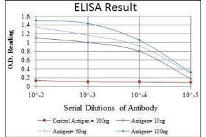 ELISA image for anti-Cas-Br-M (Murine) Ecotropic Retroviral Transforming Sequence (CBL) antibody (ABIN1845278)