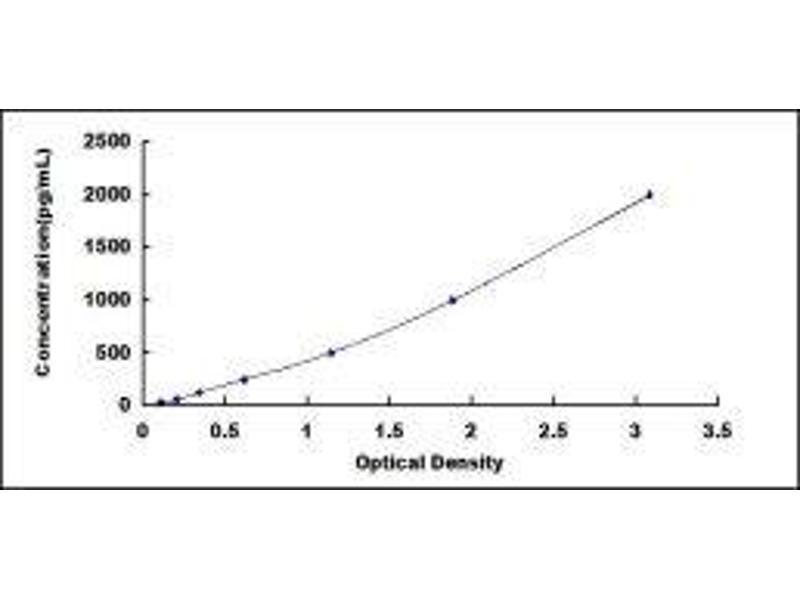 S100 Calcium Binding Protein B (S100B) ELISA Kit