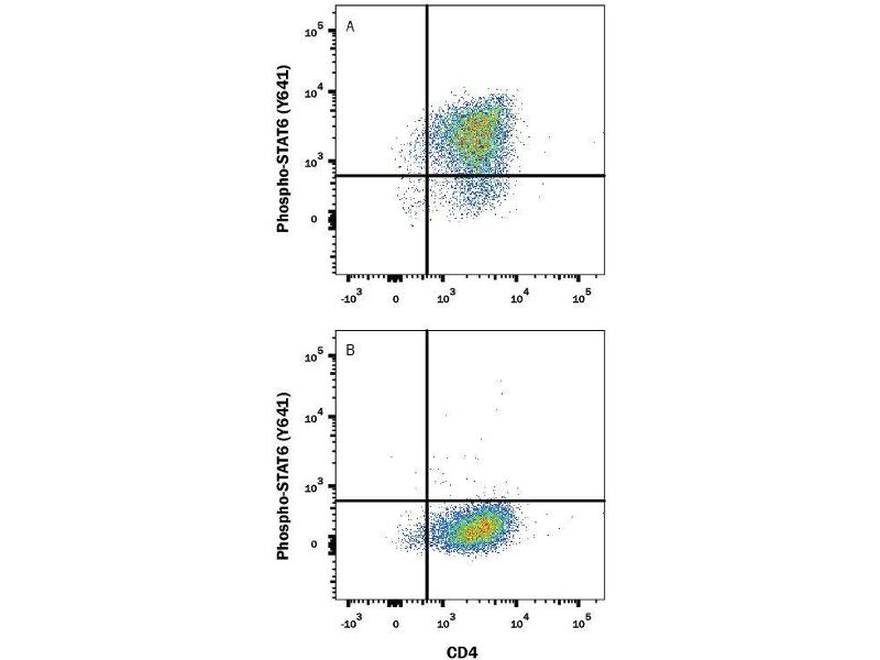 Flow Cytometry (FACS) image for anti-STAT6 antibody (Signal Transducer and Activator of Transcription 6, Interleukin-4 Induced) (Tyr641) (Alexa Fluor 647) (ABIN4898878)
