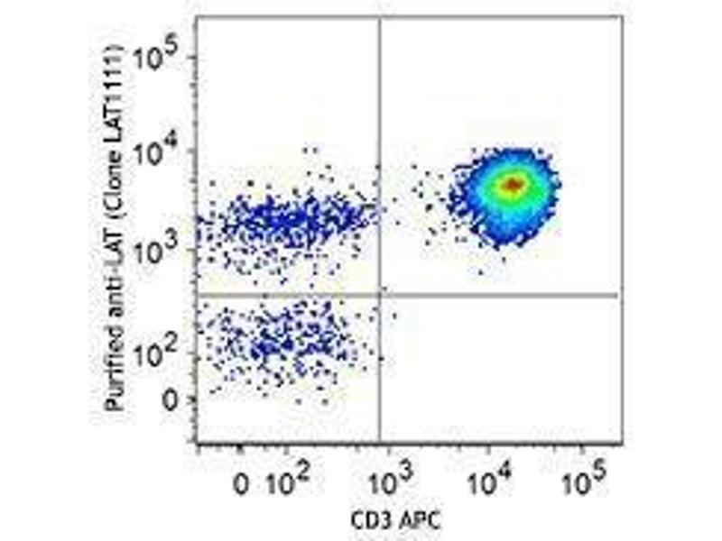 Flow Cytometry (FACS) image for anti-LAT antibody (Linker For Activation of T Cells) (ABIN2666079)