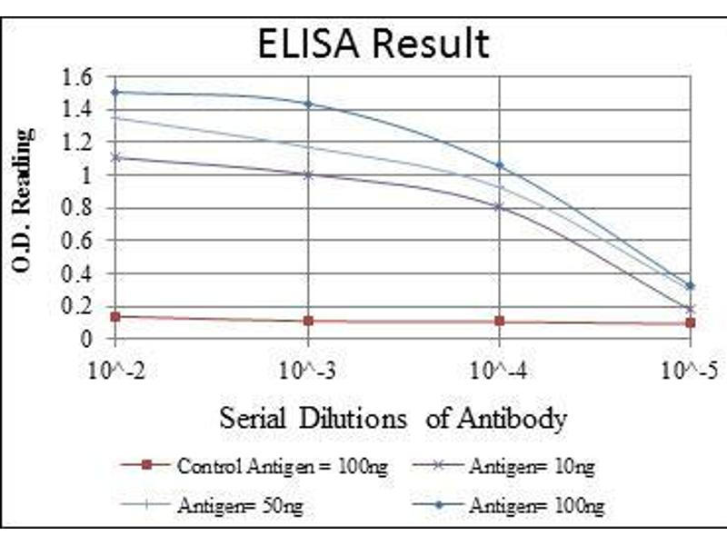 ELISA image for anti-Cas-Br-M (Murine) Ecotropic Retroviral Transforming Sequence (CBL) antibody (ABIN4880224)