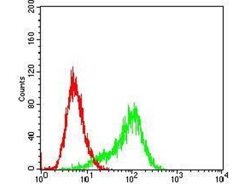 Flow Cytometry (FACS) image for anti-Ribosomal Protein S6 Kinase, 90kDa, Polypeptide 2 (RPS6KA2) (AA 415-734) antibody (ABIN4881243)