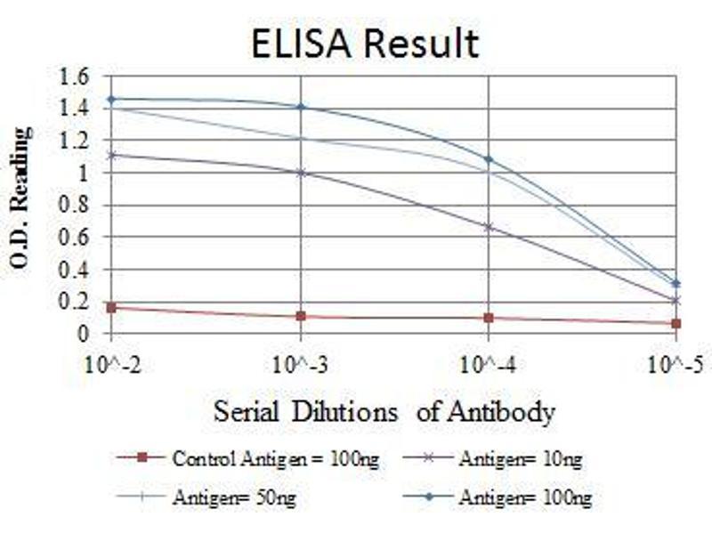 ELISA image for anti-C-MYC antibody (V-Myc Myelocytomatosis Viral Oncogene Homolog (Avian)) (ABIN969300)