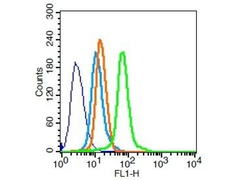 Flow Cytometry (FACS) image for anti-TGFA antibody (Transforming Growth Factor, alpha) (AA 24-52) (ABIN724415)