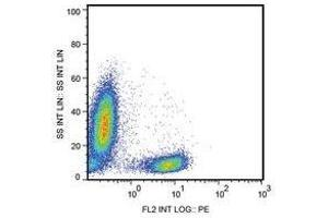 Flow Cytometry (FACS) image for anti-CD28 antibody (CD28)  (APC) (ABIN400889)
