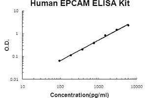 Image no. 1 for Epithelial Cell Adhesion Molecule (EPCAM) ELISA Kit (ABIN6719777)