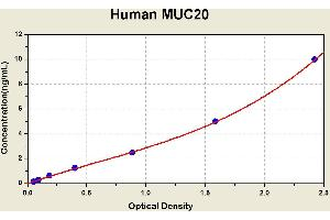 Image no. 1 for Mucin 20, Cell Surface Associated (MUC20) ELISA Kit (ABIN1116043)