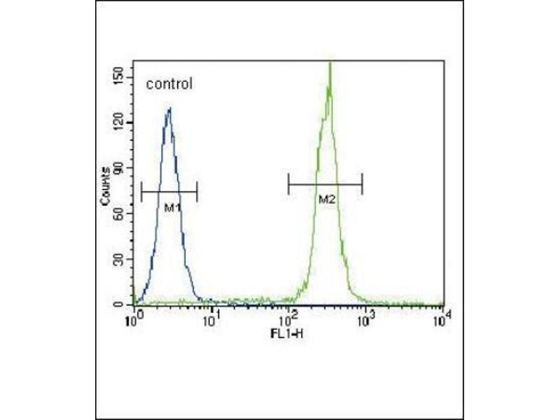 Flow Cytometry (FACS) image for anti-Betacellulin (BTC) (N-Term) antibody (ABIN4284565)