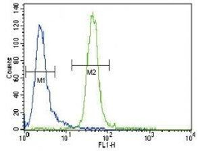 Flow Cytometry (FACS) image for anti-Muscle, Skeletal, Receptor Tyrosine Kinase (MUSK) (AA 35-65) antibody (ABIN3031877)
